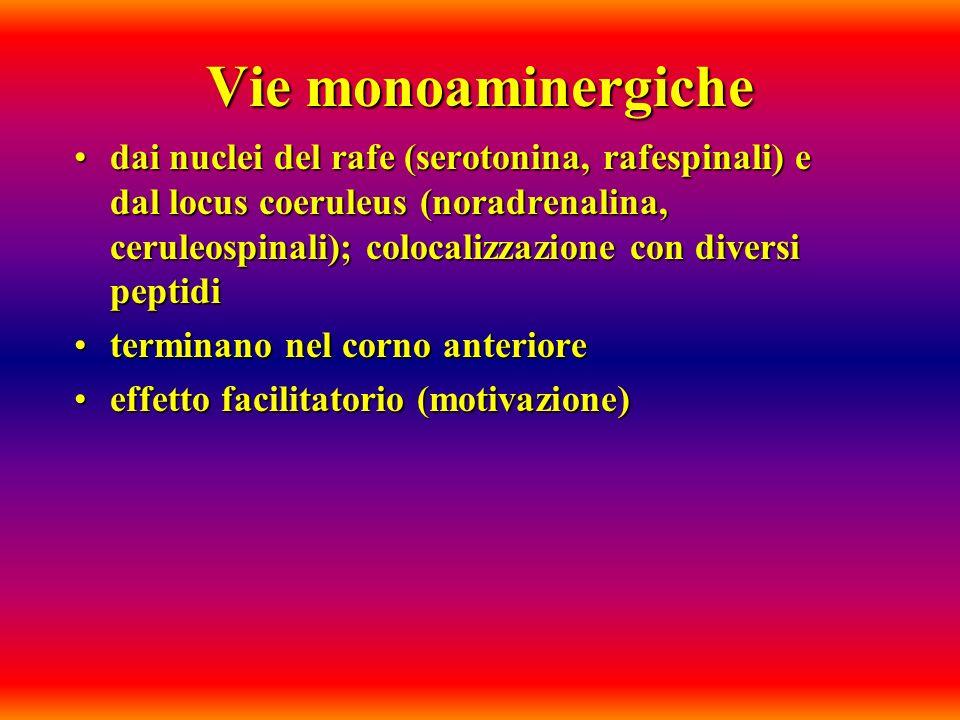 Vie monoaminergiche