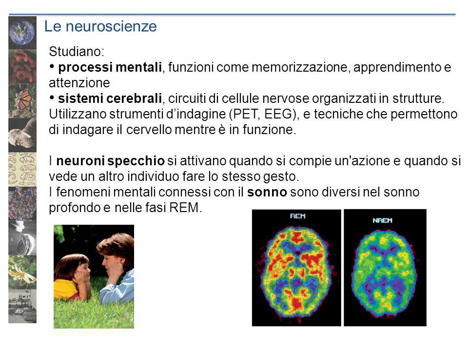 Le neuroscienze Studiano: