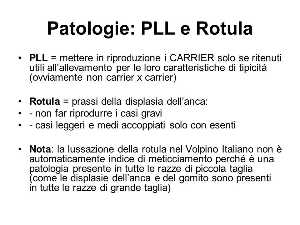 Patologie: PLL e Rotula