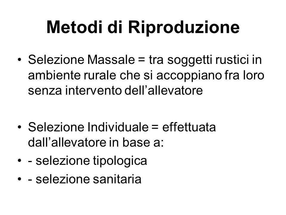 Metodi di Riproduzione