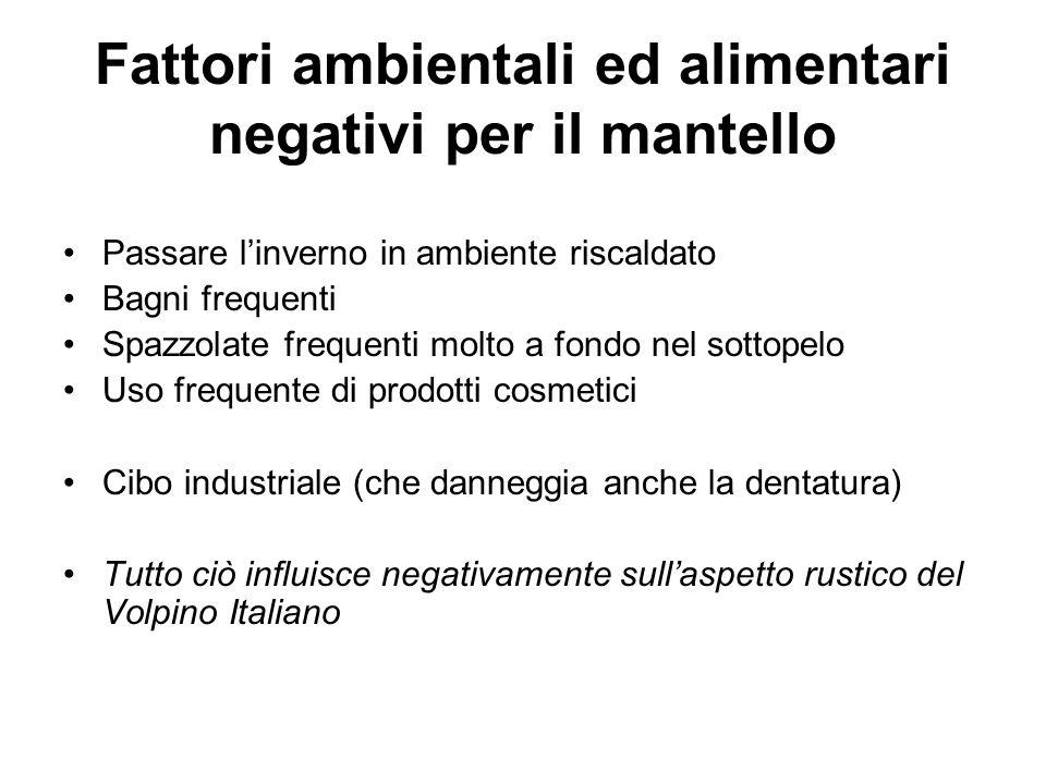 Fattori ambientali ed alimentari negativi per il mantello