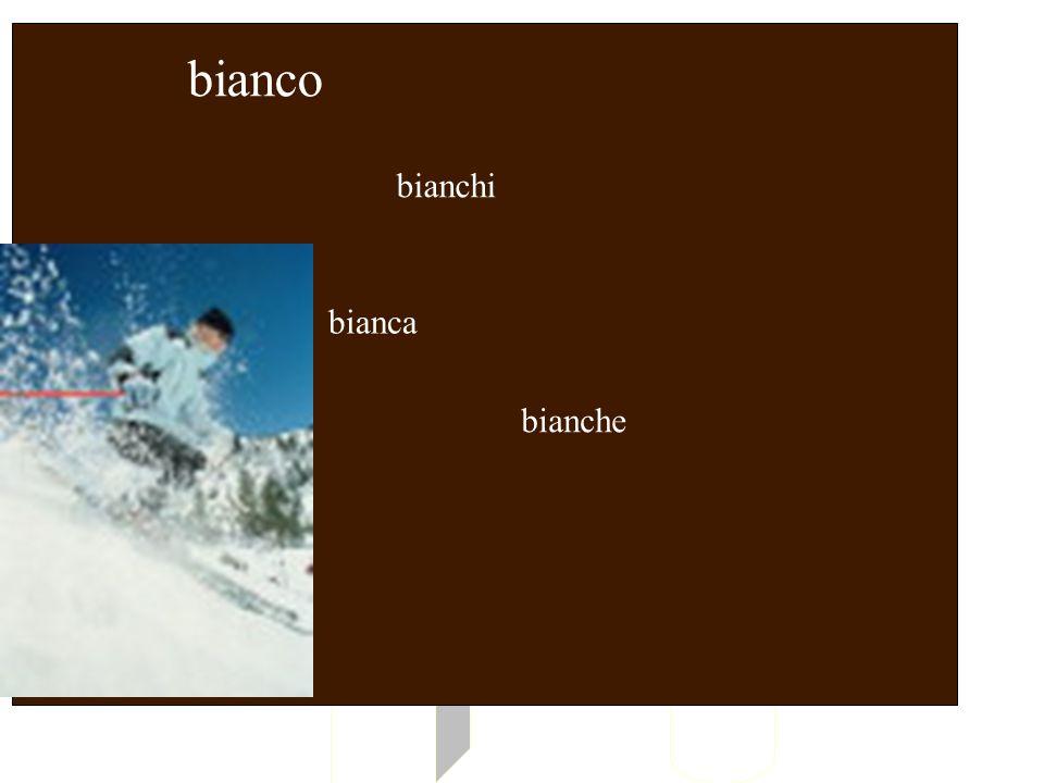 bianco bianchi BIANCO bianca bianche