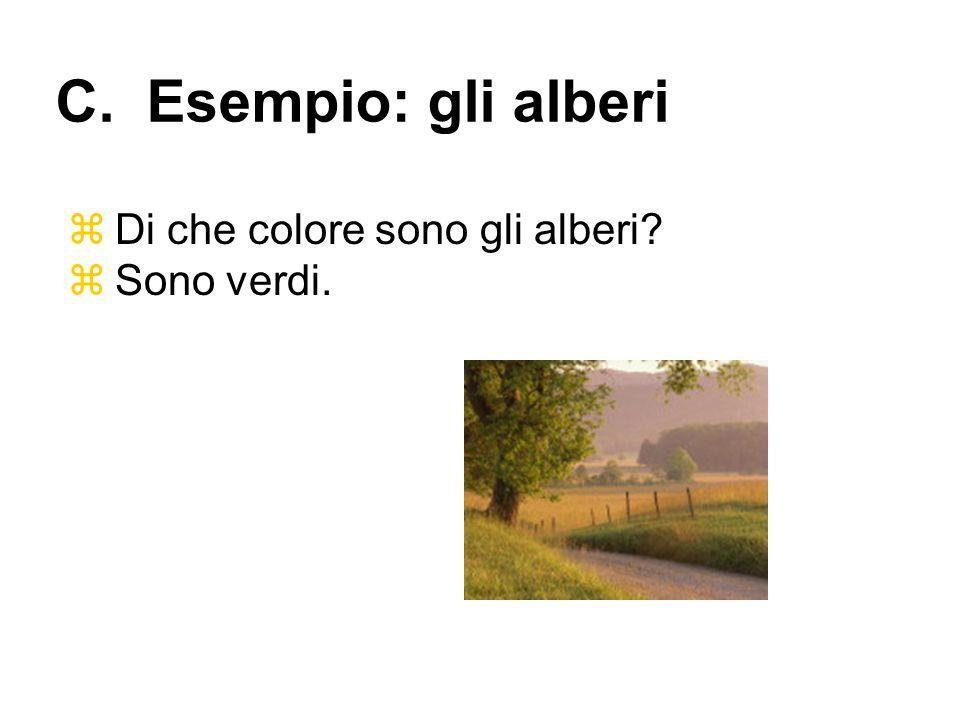 C. Esempio: gli alberi Di che colore sono gli alberi Sono verdi.