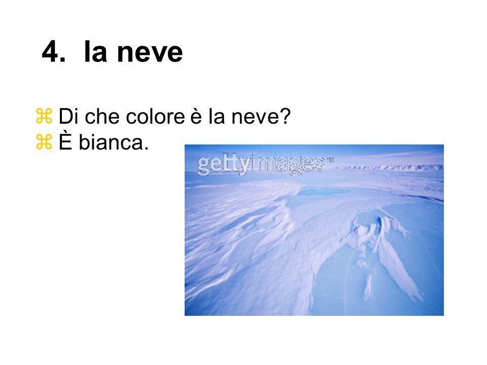 4. la neve Di che colore è la neve È bianca.