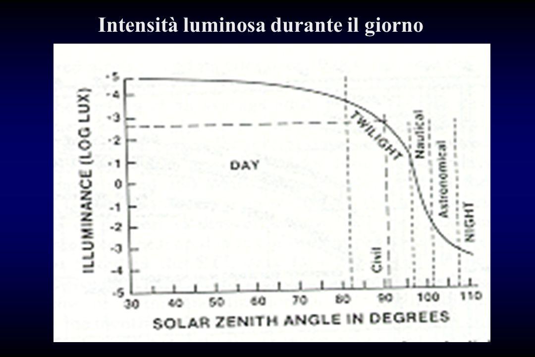 Intensità luminosa durante il giorno