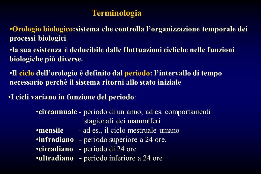 Terminologia Orologio biologico:sistema che controlla l'organizzazione temporale dei processi biologici.