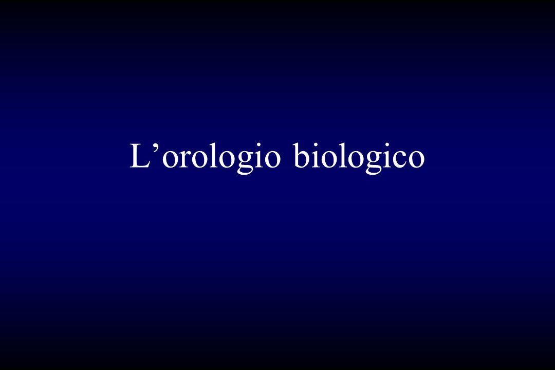 L'orologio biologico