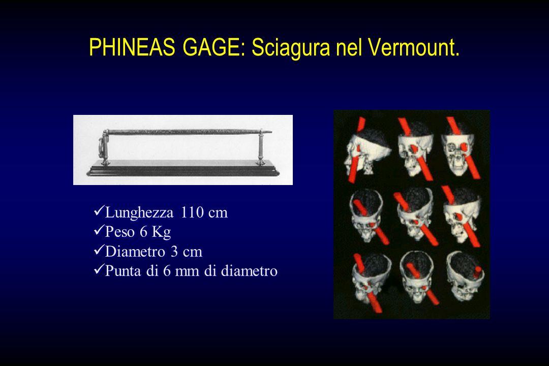 PHINEAS GAGE: Sciagura nel Vermount.