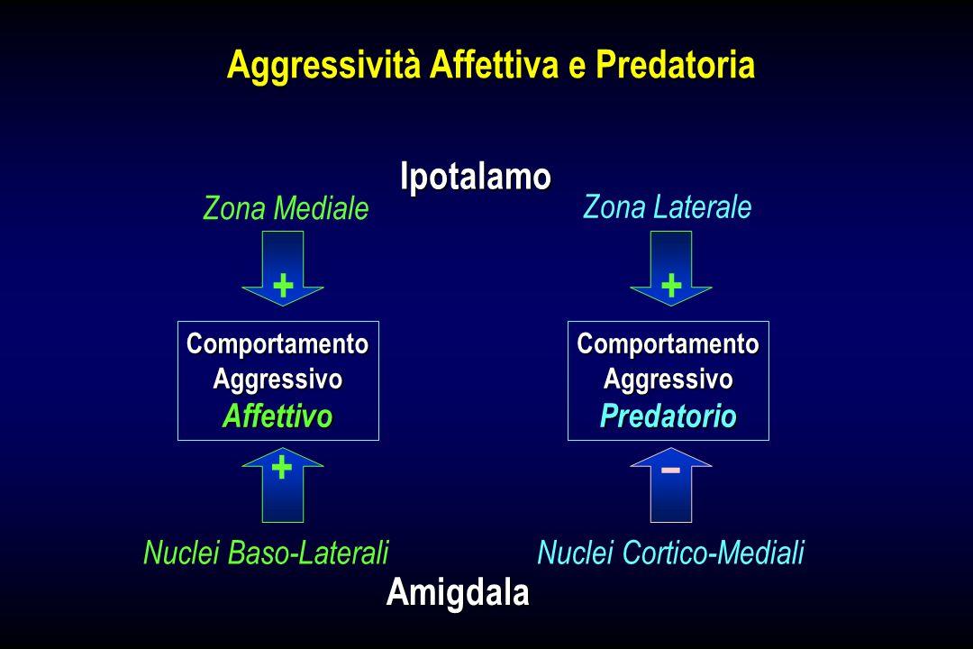 Aggressività Affettiva e Predatoria