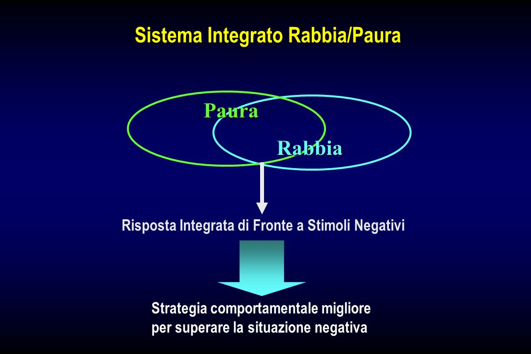 Sistema Integrato Rabbia/Paura