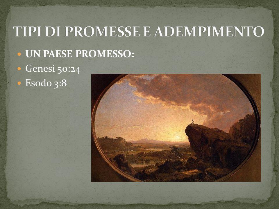 TIPI DI PROMESSE E ADEMPIMENTO