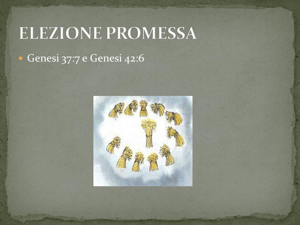 ELEZIONE PROMESSA Genesi 37:7 e Genesi 42:6