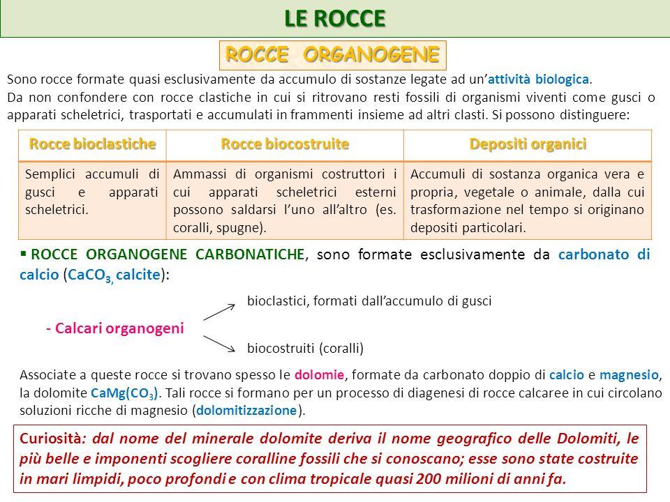 LE ROCCE ROCCE ORGANOGENE Rocce bioclastiche Rocce biocostruite