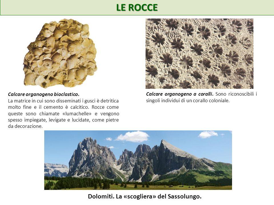 LE ROCCE Dolomiti. La «scogliera» del Sassolungo.