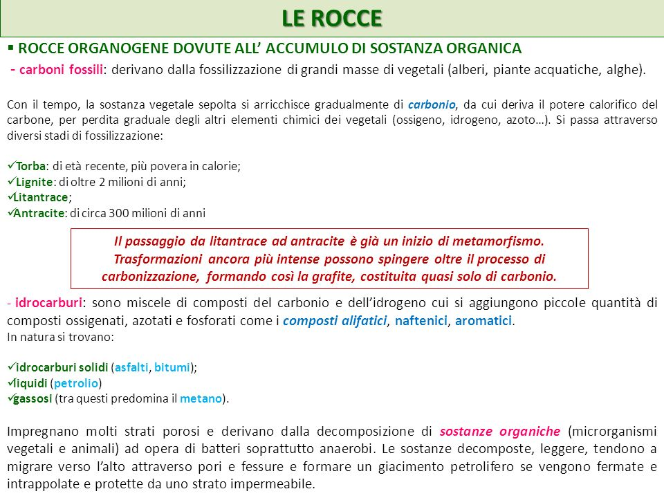 LE ROCCE ROCCE ORGANOGENE DOVUTE ALL' ACCUMULO DI SOSTANZA ORGANICA