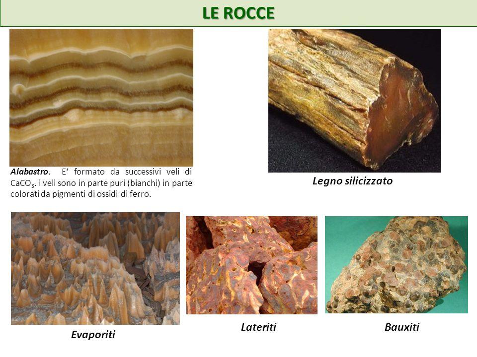 LE ROCCE Legno silicizzato Evaporiti Lateriti Bauxiti