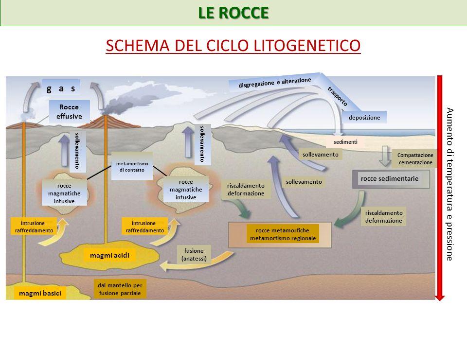 SCHEMA DEL CICLO LITOGENETICO