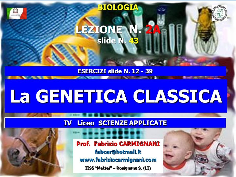 La GENETICA CLASSICA LEZIONE N. 2A BIOLOGIA slide N. 43
