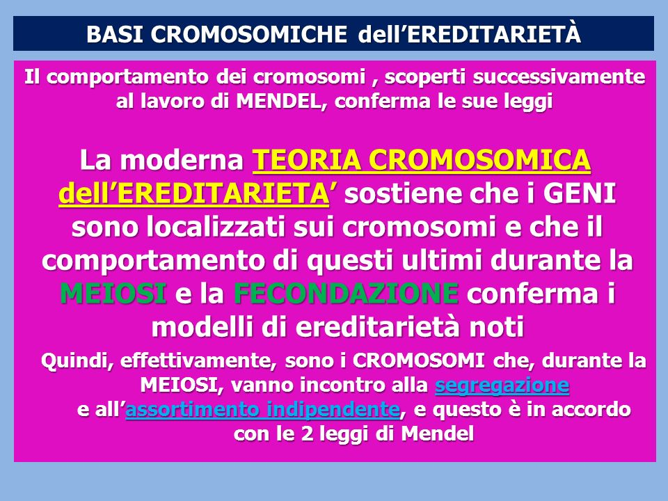BASI CROMOSOMICHE dell'EREDITARIETÀ