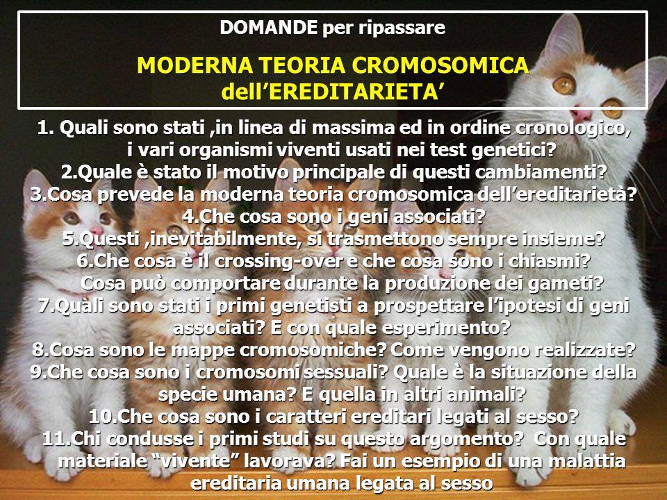 MODERNA TEORIA CROMOSOMICA dell'EREDITARIETA'