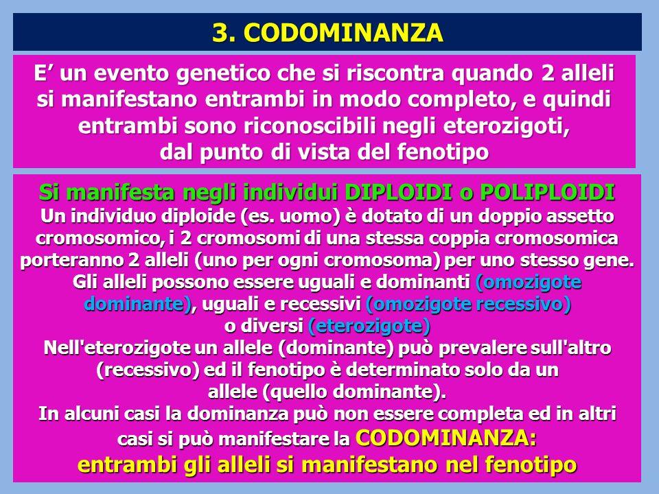 3. CODOMINANZA