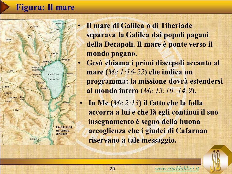 Figura: Il mare Il mare di Galilea o di Tiberiade separava la Galilea dai popoli pagani della Decapoli. Il mare è ponte verso il mondo pagano.