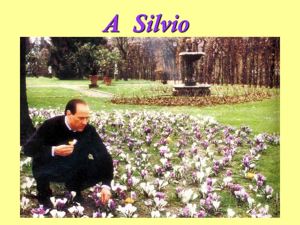 A Silvio