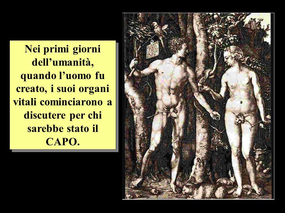 Nei primi giorni dell'umanità, quando l'uomo fu creato, i suoi organi vitali cominciarono a discutere per chi sarebbe stato il CAPO.