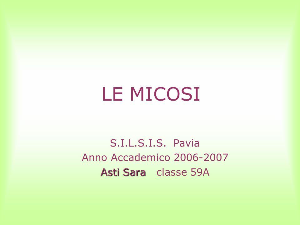 S.I.L.S.I.S. Pavia Anno Accademico 2006-2007 Asti Sara classe 59A