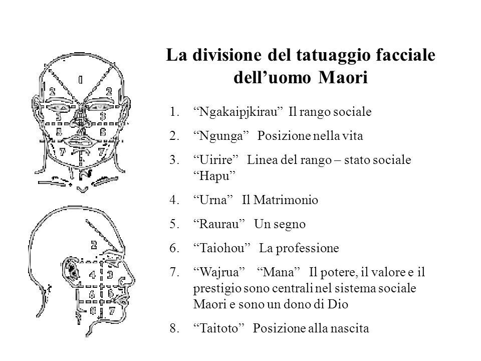 La divisione del tatuaggio facciale dell'uomo Maori