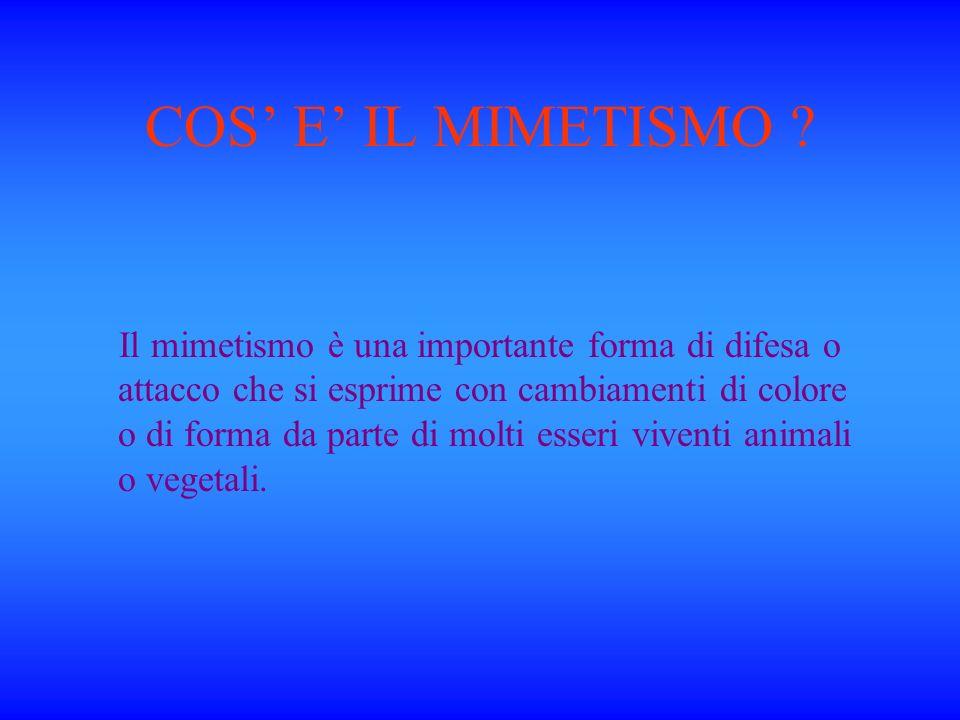 COS' E' IL MIMETISMO