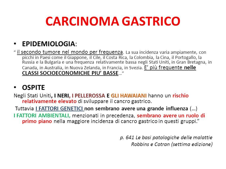 CARCINOMA GASTRICO EPIDEMIOLOGIA: OSPITE
