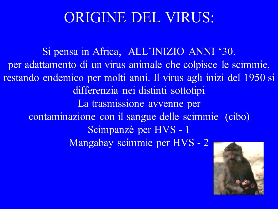 ORIGINE DEL VIRUS: Si pensa in Africa, ALL'INIZIO ANNI '30