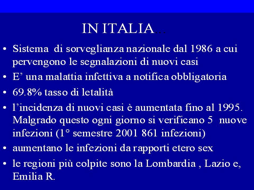 IN ITALIA
