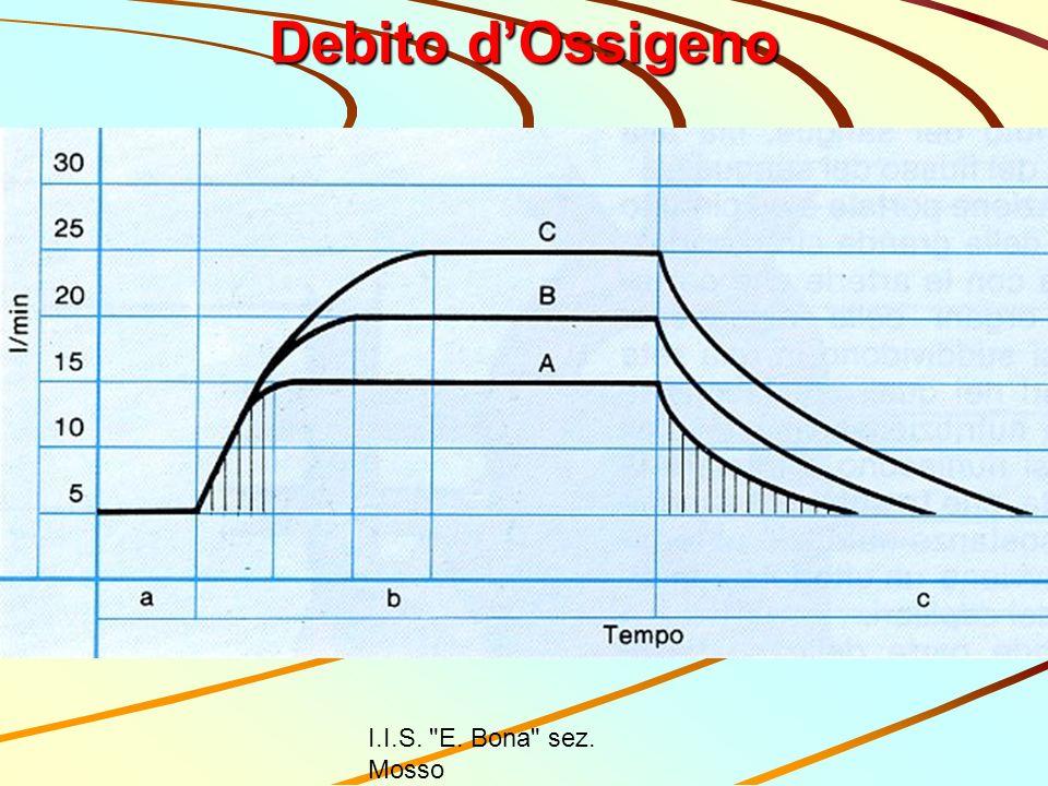 Debito d'Ossigeno I.I.S. E. Bona sez. Mosso Prof. Luciano Mazzon