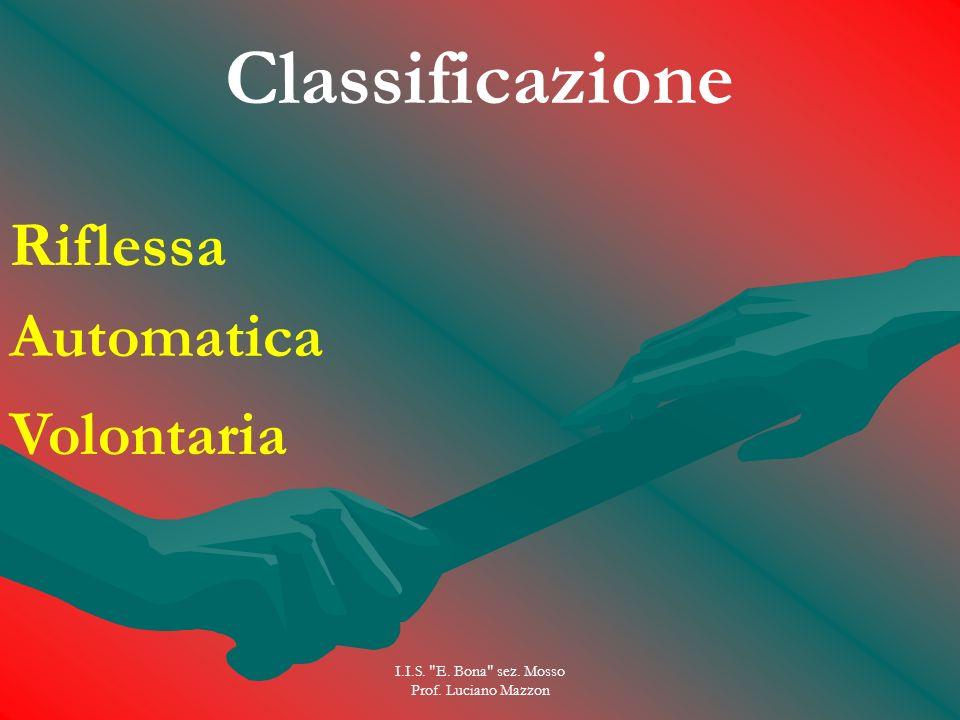 I.I.S. E. Bona sez. Mosso Prof. Luciano Mazzon