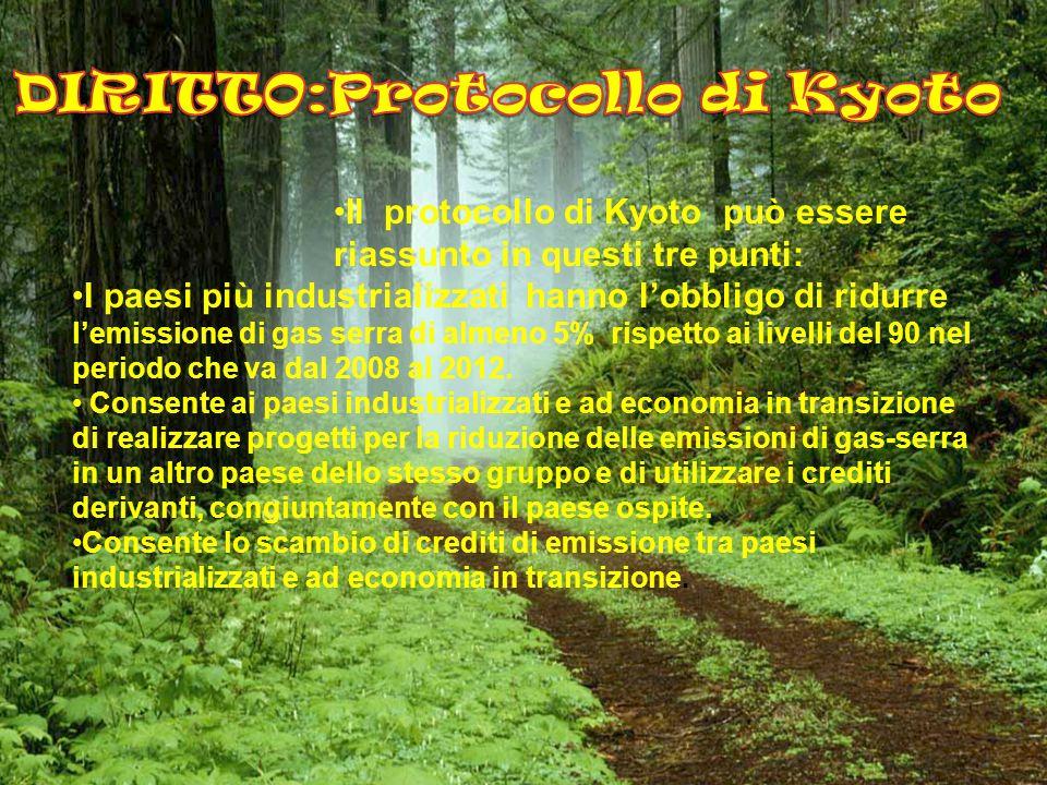 DIRITTO:Protocollo di Kyoto
