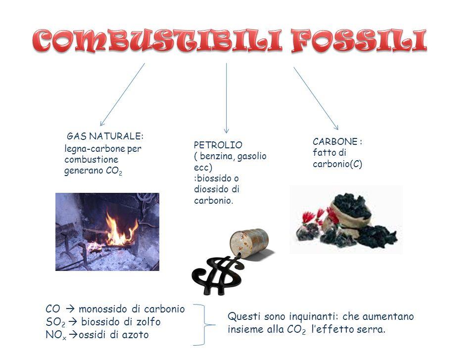 COMBUSTIBILI FOSSILI GAS NATURALE: legna-carbone per combustione generano CO2. CARBONE : fatto di carbonio(C)