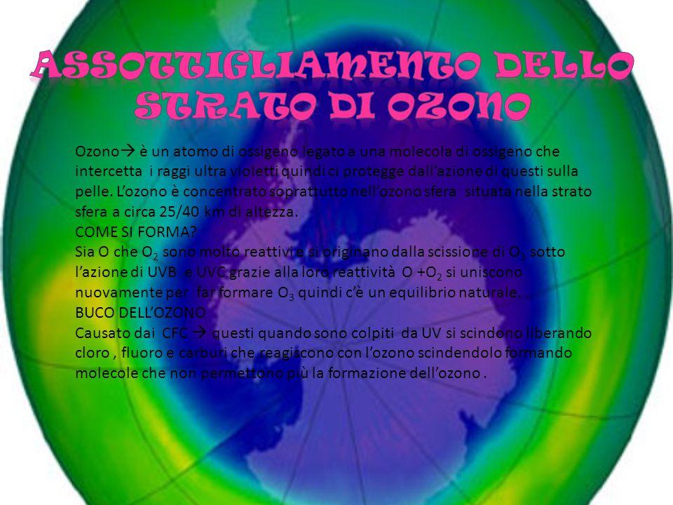 ASSOTTIGLIAMENTO DELLO