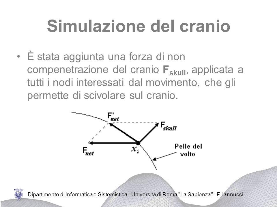 Simulazione del cranio