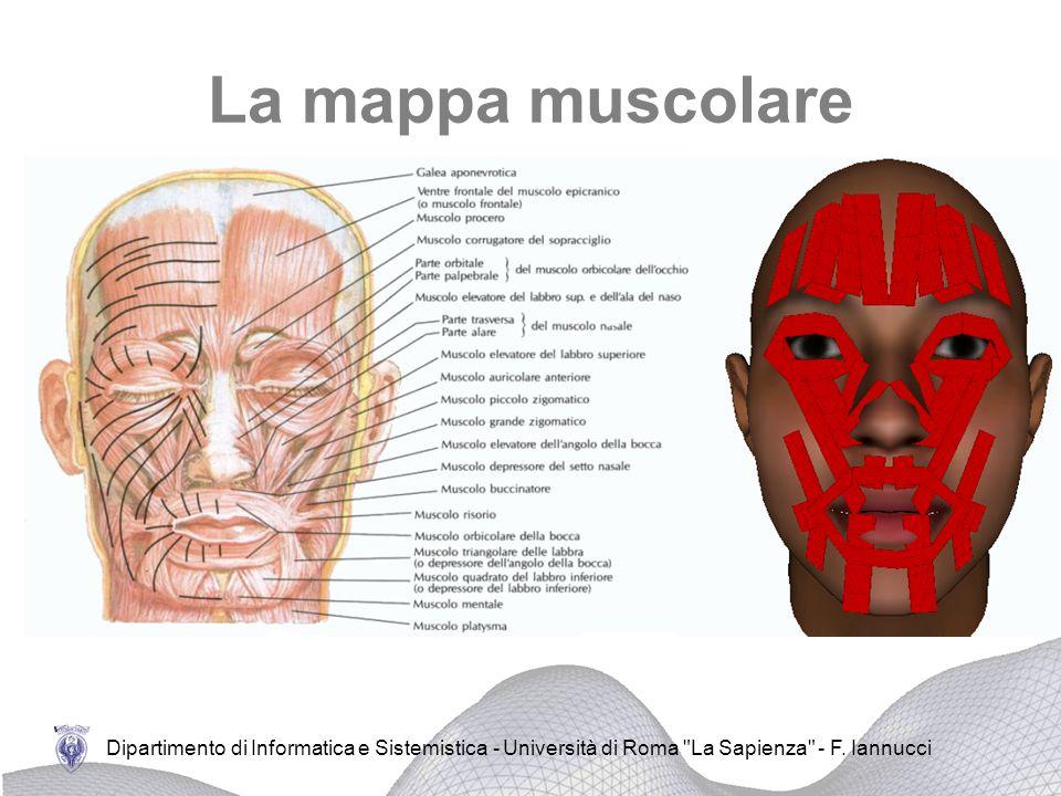 La mappa muscolare Dipartimento di Informatica e Sistemistica - Università di Roma La Sapienza - F.