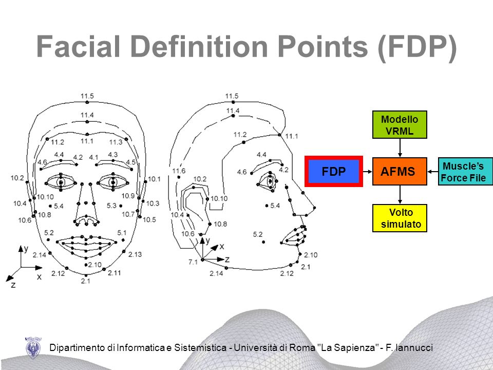 Facial Definition Points (FDP)