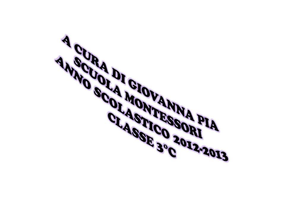A CURA DI GIOVANNA PIA SCUOLA MONTESSORI ANNO SCOLASTICO 2012-2013 CLASSE 3°C