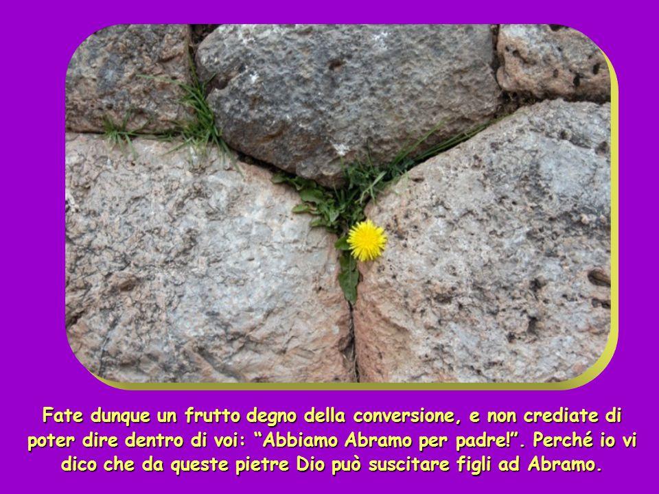 Fate dunque un frutto degno della conversione, e non crediate di poter dire dentro di voi: Abbiamo Abramo per padre! . Perché io vi dico che da queste pietre Dio può suscitare figli ad Abramo.