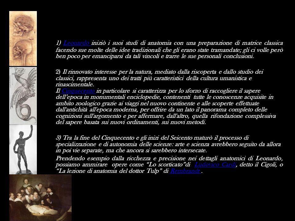 1) Leonardo iniziò i suoi studi di anatomia con una preparazione di matrice classica facendo sue molte delle idee tradizionali che gli erano state tramandate; gli ci volle però ben poco per emanciparsi da tali vincoli e trarre le sue personali conclusioni.
