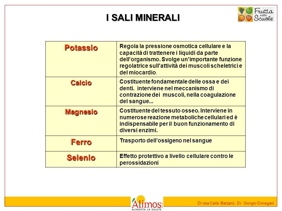 I SALI MINERALI Potassio Ferro Selenio Calcio Magnesio
