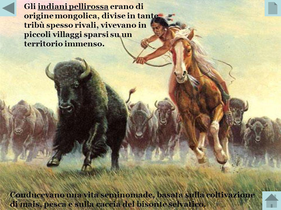 Gli indiani pellirossa erano di origine mongolica, divise in tante tribù spesso rivali, vivevano in piccoli villaggi sparsi su un territorio immenso.