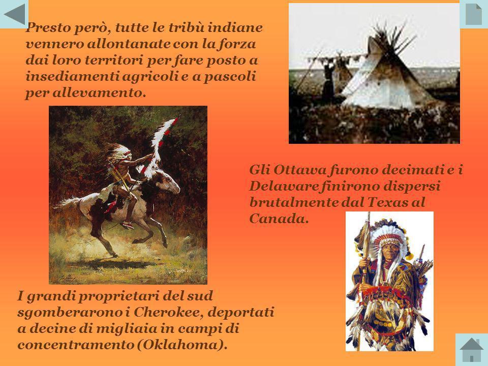 Presto però, tutte le tribù indiane vennero allontanate con la forza dai loro territori per fare posto a insediamenti agricoli e a pascoli per allevamento.