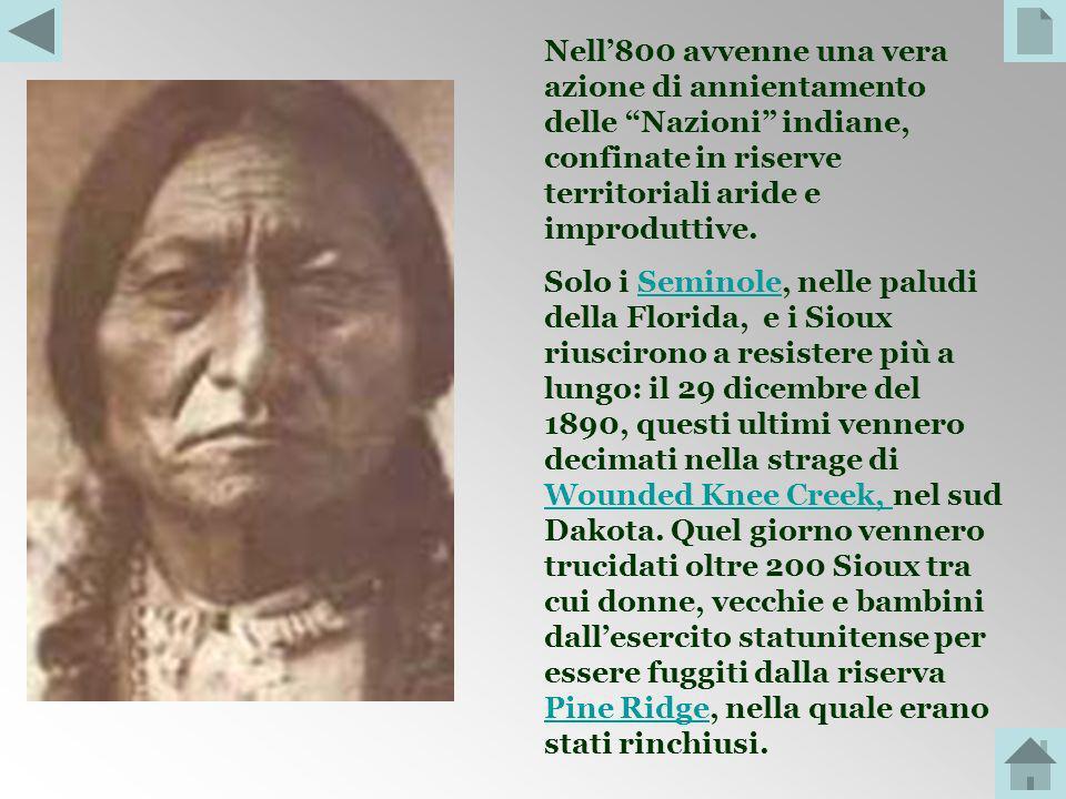 Nell'800 avvenne una vera azione di annientamento delle Nazioni indiane, confinate in riserve territoriali aride e improduttive.