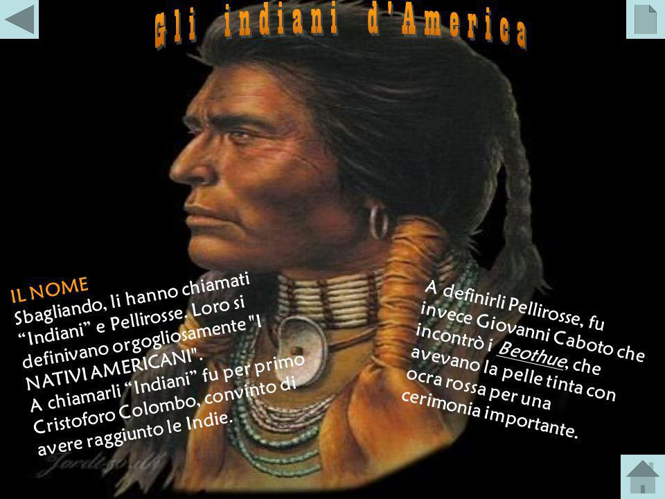 Gli indiani d America Sbagliando, li hanno chiamati Indiani e Pellirosse. Loro si definivano orgogliosamente I NATIVI AMERICANI .